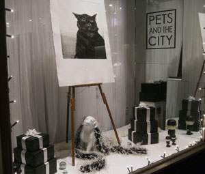 Life in Black & White - Pets & the City